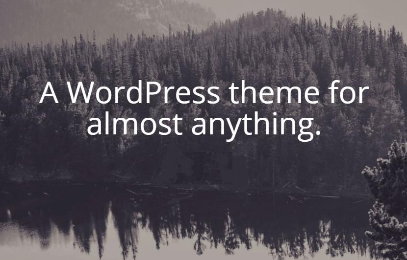 usar wordpress